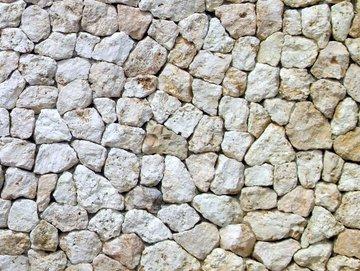 琉球石灰岩.JPG
