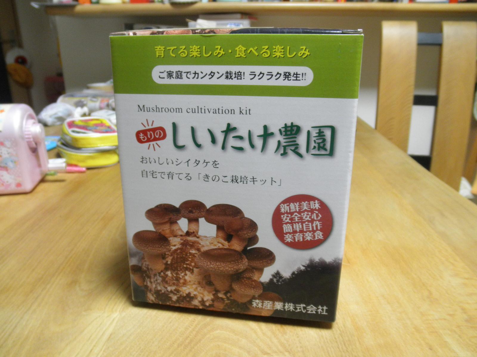 シイタケ1.JPG