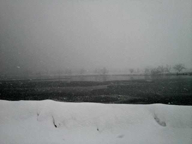 円山川.jpg